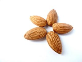Sweet and Bitter Almonds