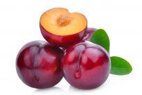 plum-fruit