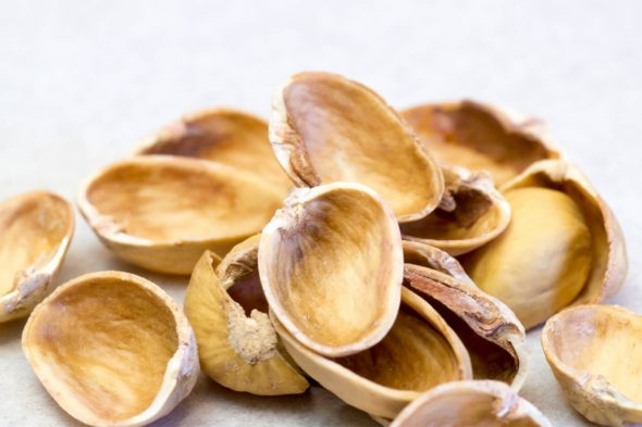 Truth about Eating Pistachio Shells