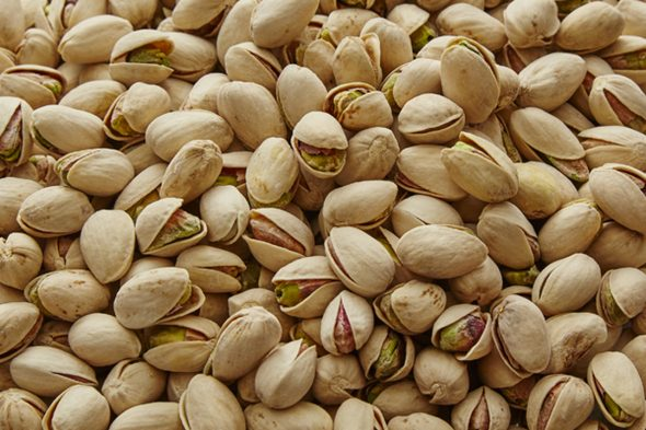 Worms in Pistachios, true or myth