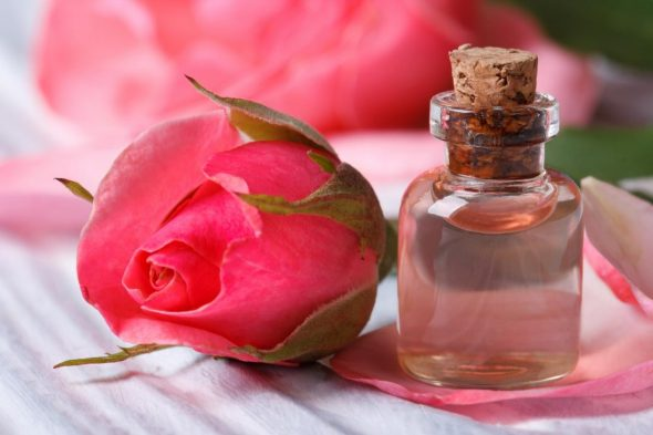 All About Rose And Rose water