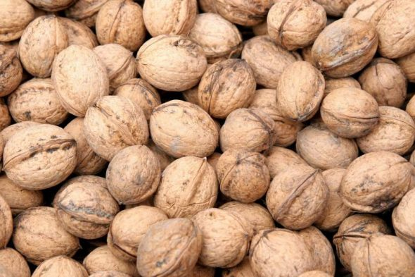 Walnuts Production Management
