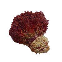 Bunch Saffron (Dasteh)