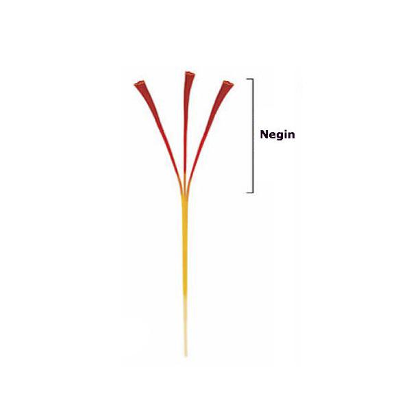 What is Negin Saffron