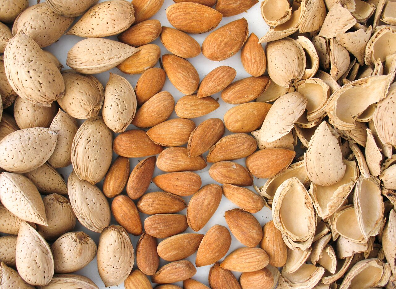 What is Almond ?